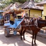 Local Transport, Baruna Villas, Gili Trawangan, lombok - Indonesia.